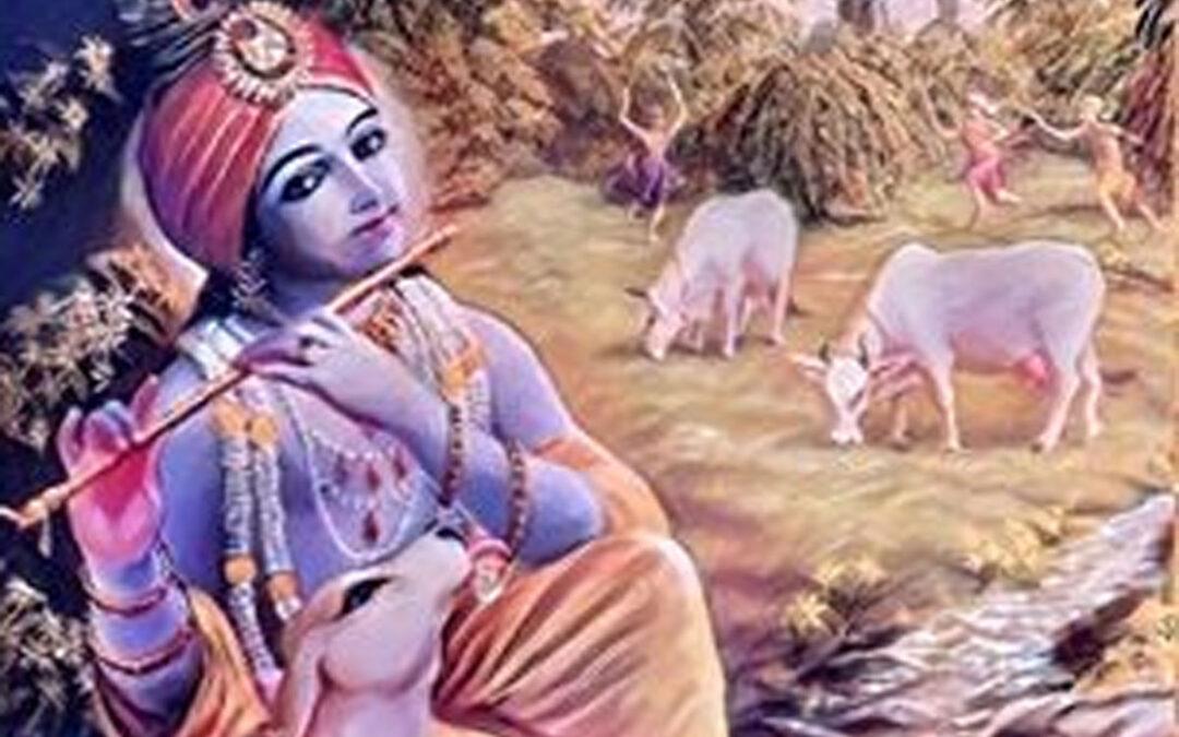 18-08. Brahma Vimohana Lila